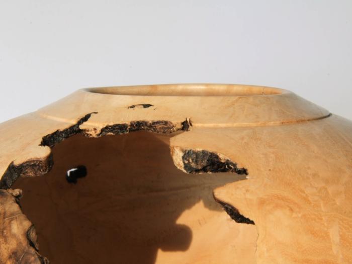 Hollow Frassino Olivato tornitura legno